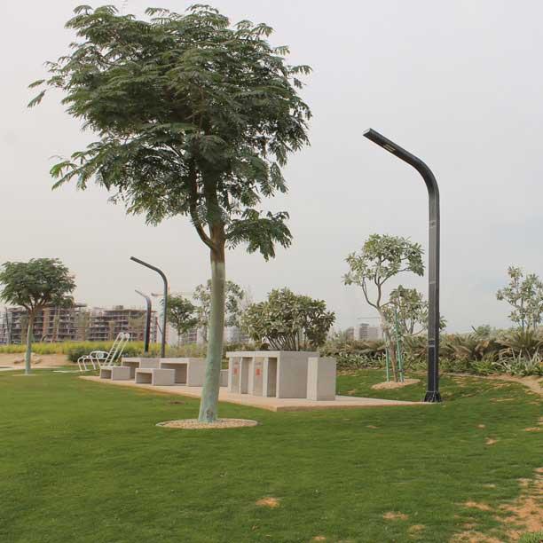 Curve Solar Pole Light